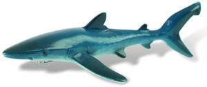 Picture of Rechin albastru