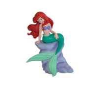 Imaginea Ariel pe stanca