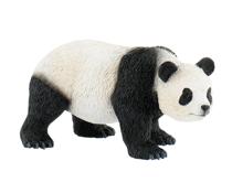 Imaginea Urs panda