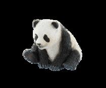 Imaginea Pui de urs panda