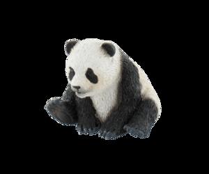Picture of Pui de urs panda