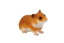 Imaginea Hamster