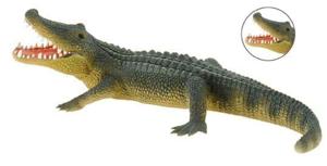 Picture of Aligator