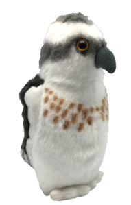 Picture of Pasare cu sunet Vultur Pescar - OSPREY